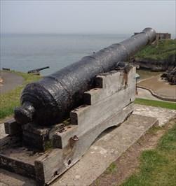 Custom House Cannon - Tenby