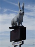 Image for School Mascot Jackrabbit - Forney, TX