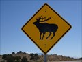 Image for Elk Crossing - Santa Ana Pueblo, NM