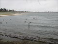 Image for Lake Wendouree runs dry (2006)