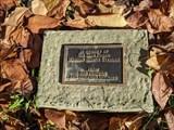 Image for Marian Hontz Steidel - Allentown, PA