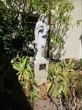 Image for St Lucy - Santa Cruz, CA