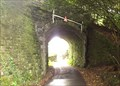Image for Railway Bridge Wilminstone, Tavistock, Devon UK