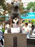 Image for Hachiko Memorial Statue - Tokyo, Japan