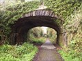 Image for Tavistock Viaduct Walk Railway Cutting, Bridge 1 - Tavistock, UK