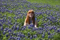 Image for Texas Bluebonnets -- Homer Johnson Stadium, Garland TX