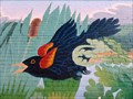 Image for Marsh Scene - Easthampton, MA