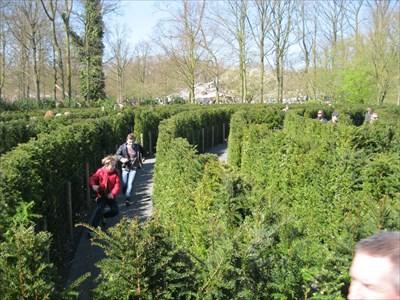 Outdoor Maze Keukenhof - Lisse - Netherlands