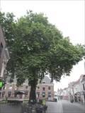 Image for De Dikke Boom - Bergen op Zoom, the Netherlands
