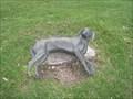 Image for Dream Dog - Warm Springs Park - Salt Lake City, UT
