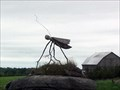 Image for Field Cricket - Lakefield, ON