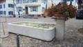 Image for Village Fountain at Restaurant Schmiedstube - Bubendorf, BL, Switzerland