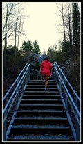 Image for 86 steps - Glenbrooke Ravine Stairs — New Westminster, BC
