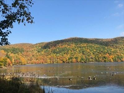 Location 4: Lac Hertel