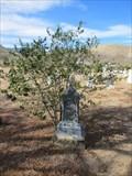 Image for Maria Robinson - Doyle, CA