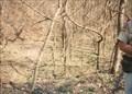 Image for Williams Hollow - Pea Ridge National Military Park - Garfield, AR