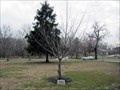 Image for Lorraine Dunlap - Lakeview Cemetery - Cinnaminson, NJ
