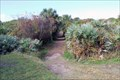 Image for Michael Crotty Bicentennial Park - Ormond Beach, Florida