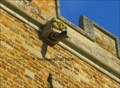 Image for St. Peter & St. Paul - Sywell, England - Gargoyle