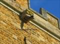 Image for St. Peter & St. Paul - Sywell, England - Gargoyle