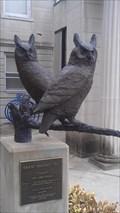 Image for Great Horned Owl - Henderson, KY
