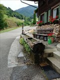 Image for Tree Trunk Fountain - Glocknerhof - Münstertal, Germany, BW