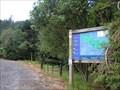 Image for Lake Mangamahoe Forest Mountain Biking Area. Taranaki. New Zealand.