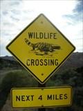 Image for Gila Monster Crossing