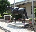 Image for Horse - Horseheads, NY