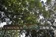 Cohanzick Zoo sign over entrance