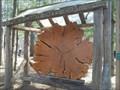Image for Tree segment at Seneca Park Zoo - Rochester, NY