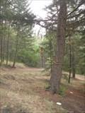 Image for Fallow Ridge Disk Golf Course - Lavington, BC