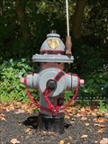 Image for State Trooper Fire Hydrant - Cumberland, Rhode Island