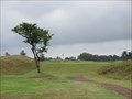 Image for Ashludie Course - Monifieth Golf Links, Angus.