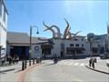 Image for 'Tentacles' exhibit at Monterey Bay Aquarium will suck you in  -  Monterey, CA