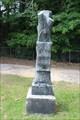 Image for John M. Carroll - New Hope Cemetery - Mineola, TX