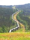 The Alaska Pipeline along the Dalton Highway