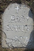 Image for Baby Smith - North of Bonners Ferry, Idaho