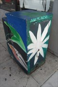 Image for Floral Utility Box  -  San Diego, CA