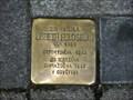 Image for Feldstein Lisbeth, Teplice, CZ