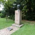 Image for Johann Wolfgang von Goethe - Heidelberg