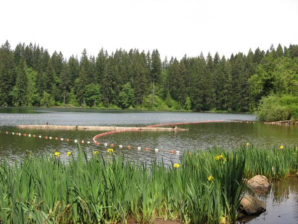 Battle ground lake state park washington state for Battle ground lake fishing
