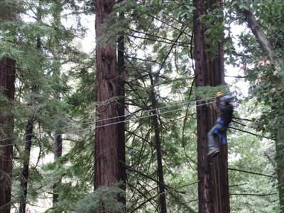 Zip Liner 3, Mt. Hermon, CA
