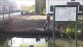 Image for 85 - De Vecht - NL - Fietsroutenetwerk De Veluwe