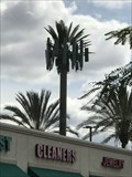 Image for Palm Tree Tower - Covina, CA