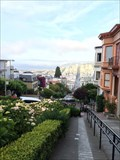 Image for San Fran from Lombard Street - San Fransisco, CA