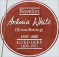 Image for Antonia White - Perham Road, London, UK