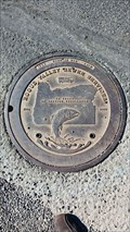 Image for Rogue River Sewer Services (Fish) Manhole Cover - Eagle Point, OR