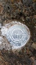 Image for MW0292 - USC&GS 'J 505' BM - Modoc County, CA