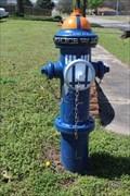 Image for TARDIS Hydrant - Ardmore, OK